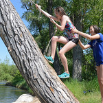 Fourteen-year-old Annie Kerns, left, and Bailee Stewart, 14, climb a tree to swing from a rope swing over the Tongue River Wednesday at the old swimming hole behind Scott Park in Dayton. Tem ...
