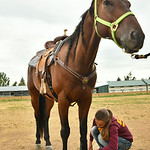 Twelve-year-old Ashlyn Ibach attaches a boot over the leg of her new hose Ticket before practicing for barrel racing Tuesday morning at the Sheridan County Fairgrounds. Ibach and her new hor ...