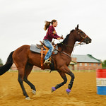 Twelve-year-old Ashlyn Ibach rides her new hose Ticket during practice for barrel racing Tuesday morning at the Sheridan County Fairgrounds. Ibach and her new horse will have to practice thi ...