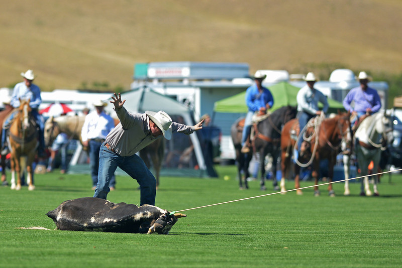 Jay Pixley finishes his steer roping run Sunday at the Big Horn Equestrian Center.