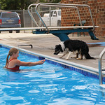 Matthew Gaston | The Sheridan PressBetty Jerney coaxes her dog Lyra into the pool using her favorite toy as bait during the dog swim at Kendrick Pool Saturday, Aug. 24, 2019.