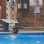 Matthew Gaston | The Sheridan PressKylee Lamb laughs as her dog Shotzy takes the plundge off the diving board at Kendrick Pool Saturday, Aug. 24, 2019.