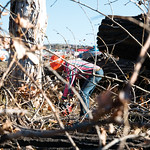 Matthew Gaston | The Sheridan PressOn Tuesday, Oct. 16, 2018, Executive Branch Tree Service's Alex Kollekowski uses a chainsaw to clear away a number of trees that were cut down due to cen ...