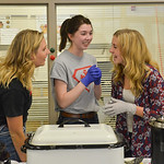 Justin Sheely | The Sheridan Press Student volunteers, from left, Kiley Carroll, Mary Miller and Libby Heimbaugh chat behind the soup table during the Soup Bowl fundraiser Tuesday evening at ...