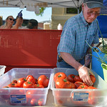Rod Adams sets out tomatoes for the Adams Family Concession during the Farmers Market Thursday on Grinnell Plaza.