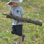 Justin Sheely | The Sheridan Press Jack Hubert carries a log to a brush pile during Science Kids' Earth Heroes program Thursday at the Red Grade Trail system near Big Horn. The kids were r ...