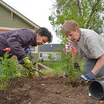 Justin Sheely | The Sheridan Press Bridge Creek residents Bernie Barlow, left, and Cynthia LoPorto plant flowers as neighbors work on their community flower garden at the Bridge Creek commun ...