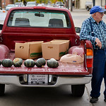 Justin Sheely | The Sheridan Press Lenus Nielsen waits by his truck as he sells squash from the back of his truck during the last Farmers Market of the season Thursday on Grinnell Plaza.