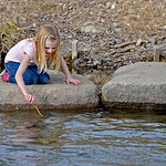 Justin Sheely | The Sheridan Press Seven-year-old Adeline Miller plays on the rocks in the Big Goose Creek Wednesday at Kendrick Park. Sheridan residents enjoyed the extra hour of sunshine a ...