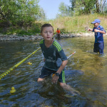 Justin Sheely | The Sheridan Press Ten-year-old Boyd DeWitt catches rubber ducks as they float down the Tongue River for the duck races during the 40th annual Dayton Days Saturday in the tow ...