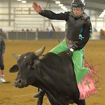 Justin Sheely | The Sheridan Press Dylan Bradford competes in Jr. Steer Riding during the performance of the Northern Plains Indian Rodeo regional finals Saturday at the Sheridan College Agr ...