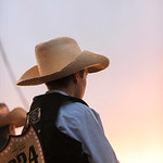 Ashleigh Fox | The Sheridan Press A young Wild Pony Races contestant watches the chutes before the race on Saturday.