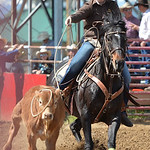 Justin Sheely | The Sheridan Press Sadie Sturman of Lusk, Wyoming, misses a catch in breakaway roping during the Sheridan High School Rodeo at the Sheridan County Fairgrounds Saturday, May 2 ...