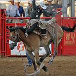 Mike Pruden | The Sheridan Press