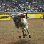 Bud Denega | The Sheridan Press Sheridan College's Chance Ames rides Bunny Girl in the short round of bareback riding during the College National Finals Rodeo at the Casper Events Center S ...