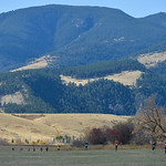 Justin Sheely | The Sheridan PressMiddle school cross-country boys run with a view of the Bighorn Mountains Saturday at Tongue River High School in Dayton.