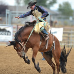 Bud Denega | The Sheridan Press Sheridan College's Lane Schuelke competes in saddle bronc during the Pat Hamilton Memorial Rodeo at the Sheridan County Fairgrounds Sunday, Sept. 23, 2018.  ...