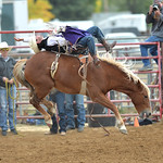 Bud Denega | The Sheridan Press Sheridan College's Cole Reiner competes in bareback during the Pat Hamilton Memorial Rodeo at the Sheridan County Fairgrounds Sunday, Sept. 23, 2018. Reiner ...