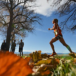 Justin Sheely | The Sheridan Press Class 3A girls run under a row of trees during the State Cross-Country Championship Saturday at the Veterans Affairs Medical Campus in Sheridan.