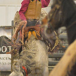Justin Sheely | The Sheridan Press Sheridan College Rodeo Athlete Sam Thurston rides saddle bronc during the last practice week of the season Tuesday at the Sheridan College AgriPark. Sherid ...