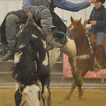 Justin Sheely | The Sheridan Press Potential rodeo athlete recruit Chance Morril of Colorado takes a run at bareback riding during the last practice week of the season Tuesday at the Sherida ...